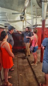 A group of 4 experiencing a wine tour at Kay Brothers winery in McLaren Vale
